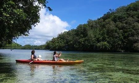 Kayak Rental In Koror
