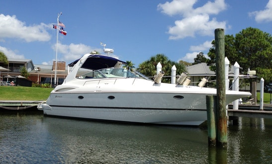 Charter 39' Cruisers Motor Yacht In Kemah, Texas