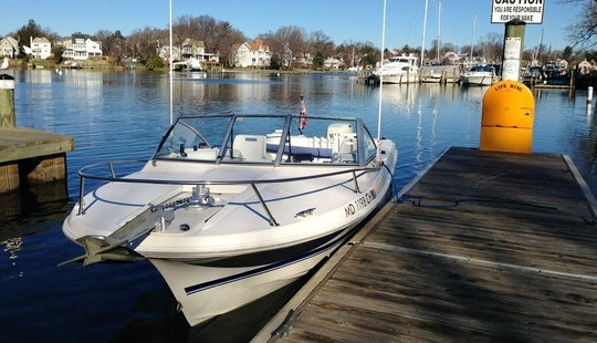 21' Bowrider Fishing Boat In Annapolis, Maryland United States