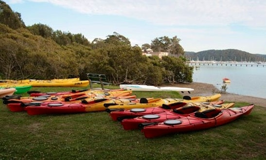 Kayak Hire In Bayview