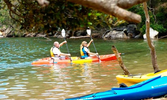 Kayak Tours In Bayview