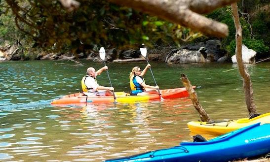 Kayak Tours In Bayview