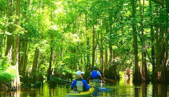 Eco-tours At Shingle Creek, Kissimmee, Fl
