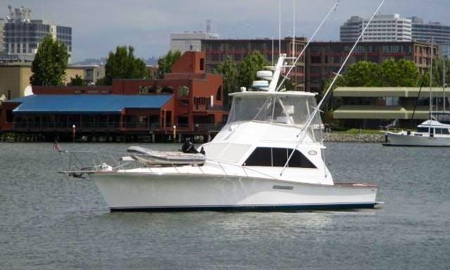 42' Sport Fisherman Ocean Yacht in Nassau, Bahamas