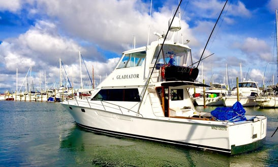 Auckland Fishing Charter On 'gladiator' Yacht With Captain Ken