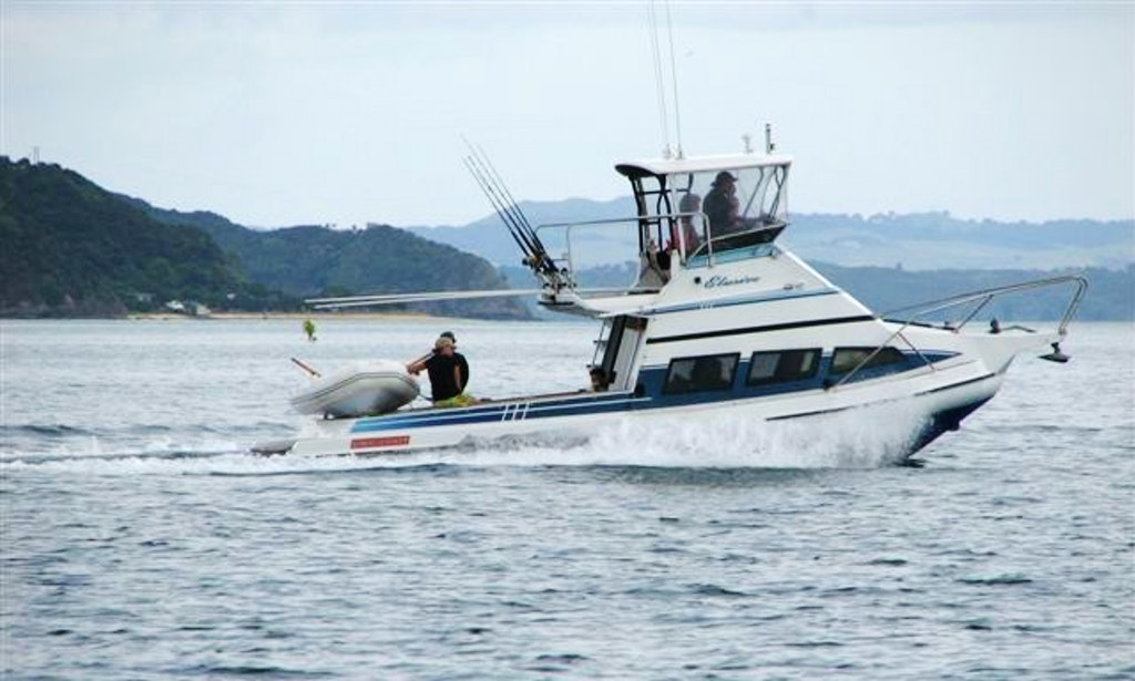 Auckland fishing charter on 39 mv elusive 39 stabicraft yacht for Fishing charters auckland
