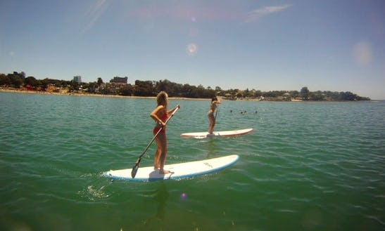 Stand Up Paddleboard Lessons In Auckland