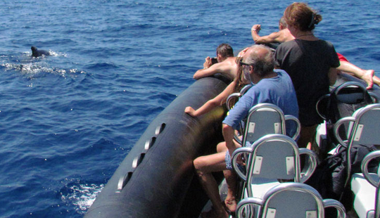 Rib Trips In Villefranche-sur-mer, France