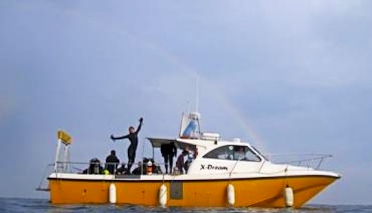 Private Diving Trips Available In Weymouth, United Kingdom