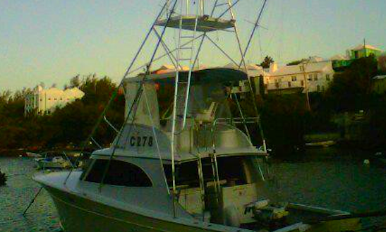 Fishing Charter On 40ft