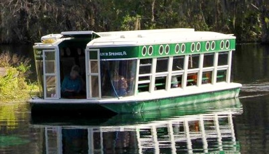 Pontoon Trips In Silver Springs, Florida