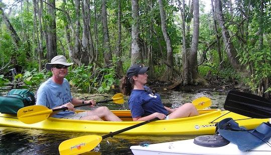 Enjoy Kayaking In Silver Springs, Florida With Family!