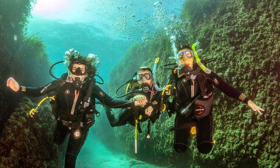 Diving In San José