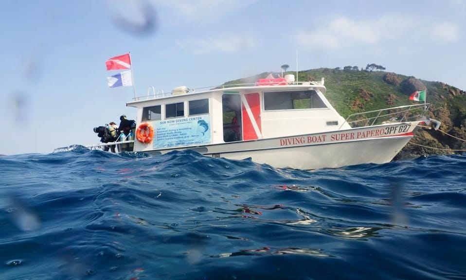 Discover Scuba Diving In Campo nell'Elba
