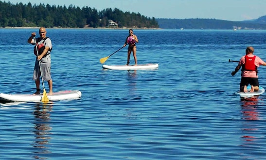 Stand Up Paddleboard Rental In Ladysmith