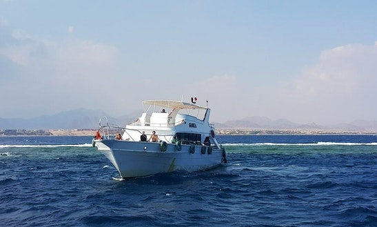 Diving In Sharm El-sheikh