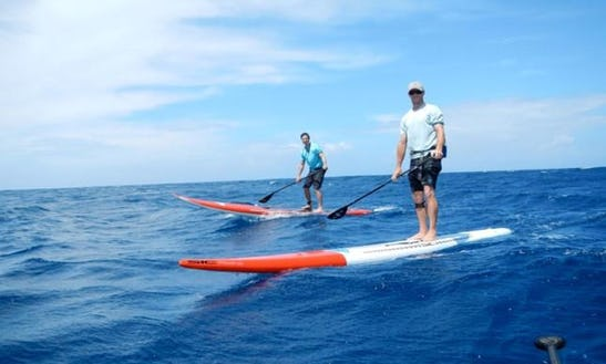 Sup Lesson And Rental In Sandringham