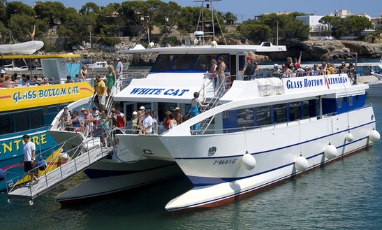 'white Cat' Catamaran Excursions In Manacor