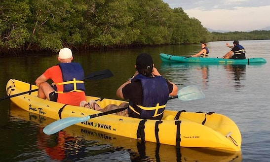 Double Kayak Rental In North Fort Myers