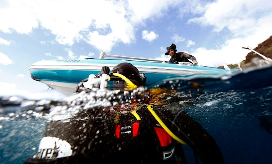 Scuba Diving, Snorkeling, & Padi Dive Courses, In Madeira