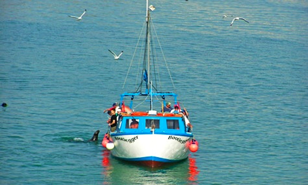 39 bootlegger 39 trawler fishing trips charter in newquay for Private fishing charters nj