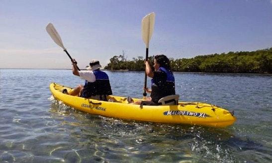 Double Kayak Rental In Miami
