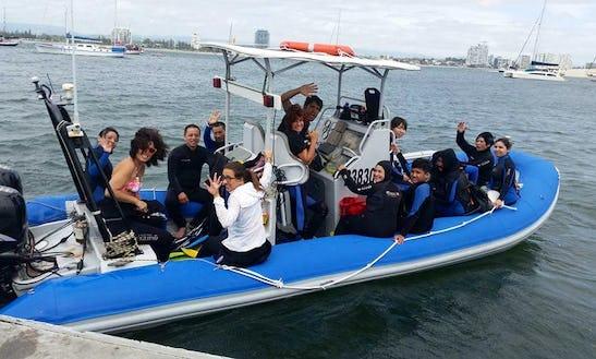 Diving Trips In Miami, Australia