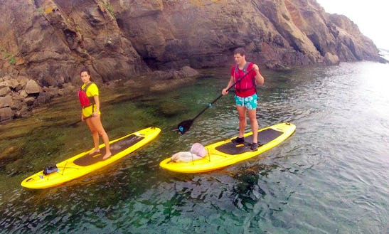 Stand Up Paddleboard Rental In Es Grau