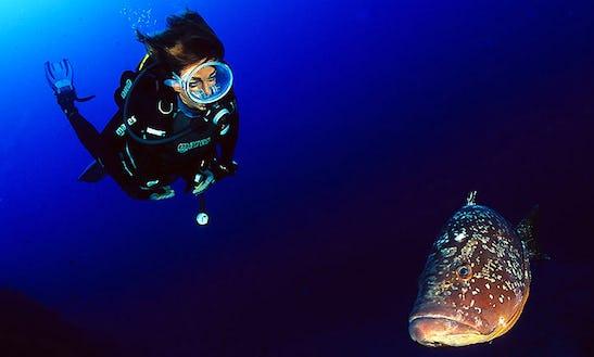 Diving Trips & Padi Courses In Pianottoli-caldarello