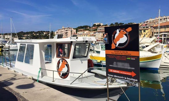 Scuba Diving In Cassis