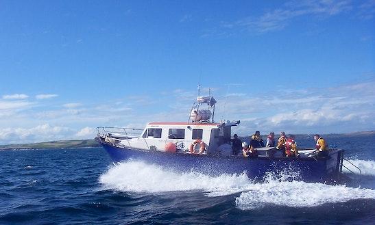43' Deep Sea Fishing Charter In Cople