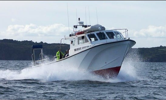 42' Offshore Fishing Charter In Mylor Churchtown