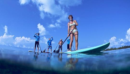 Paddleboard Rental & Lessons In Noosaville, Australia