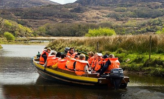 Boat Tour In Killarney