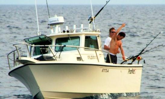 46 Bertram Sport Fisherman Fishing Trips In Versmold, Germany