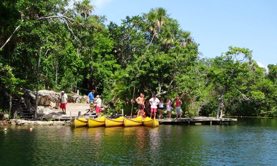 Image Result For Jungle Lakesa