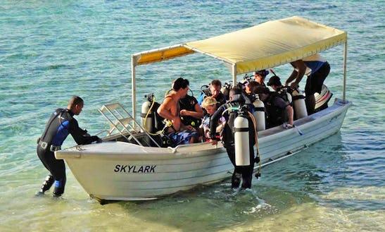 Stingray Diving Boat  In Fiji