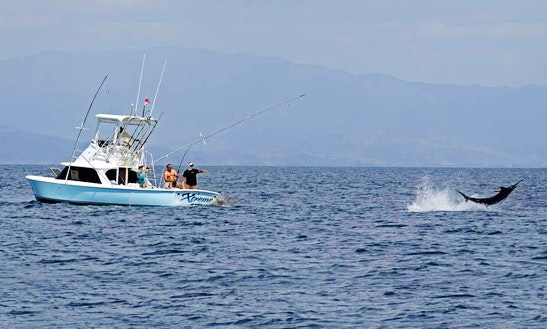 Have An Amazing Fishing Time With The 31' Sport Fisherman Charter In Veraguas, Panama