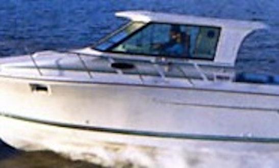 28' Cuddy Cabin