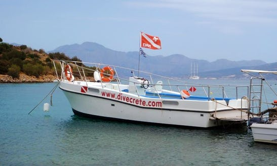 'posidonia' Boat Diving Trips & Padi Courses In Lasithi