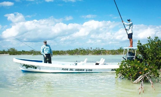 Fly Fishing Trips With Professional Guide And Private Boat In Javier Rojo Gómez