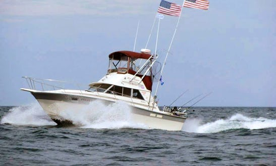 Fishing Charter On 31ft 'first Class' Sport Fisherman Yacht In Manistee, Michigan