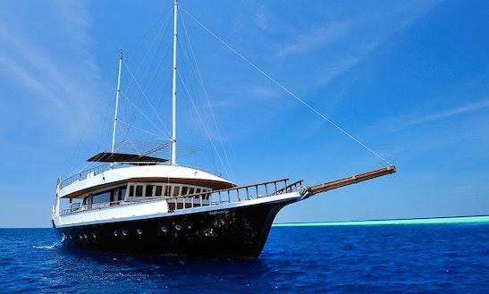 Charter 96ft