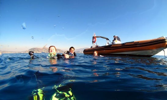 Boat Diving Trips & Padi Courses In Anatoliki Attiki