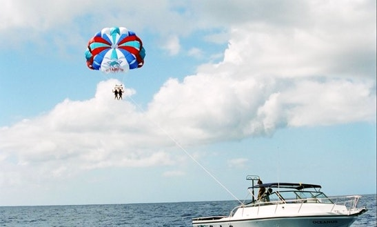 Parasailing Ride And Dolphin Watching In Tamuning