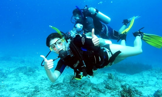Diving In Goa