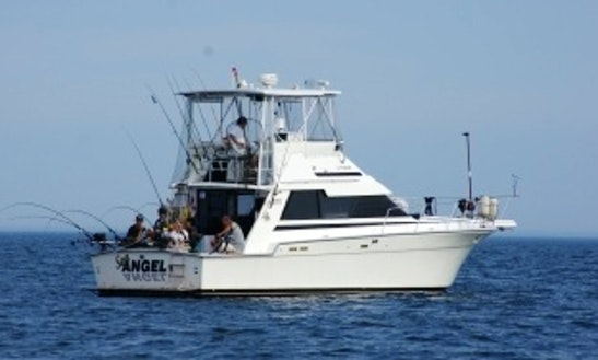 Motor Yacht  For Cruises And Fishing  In Mississauga (with Captain Only !)