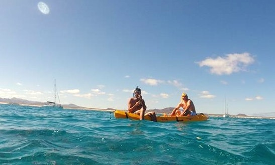 Kayak Tours In Fuerteventura, Spain
