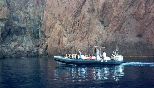 3 Hours Wildlife Tours Aboard A Semi-rigid Inflatable Boat In Cargese, France