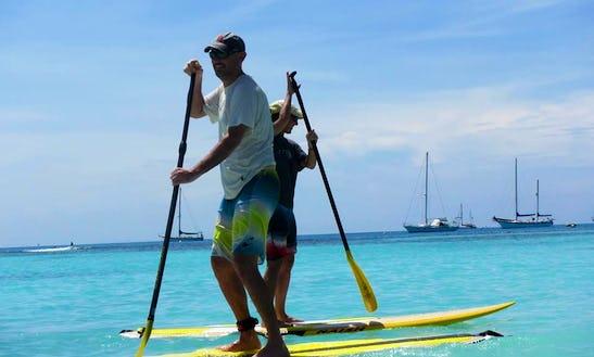 Stand Up Paddleboard Rental In Alameda